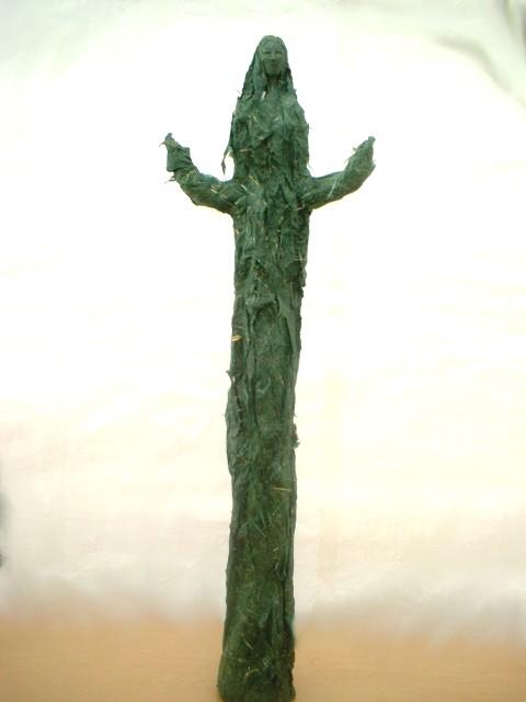 cactusnn.jpg
